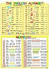 The English Alphabet/ Numbers