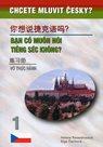 Chcete mluvit česky ?- (Vietnamština) 1 Ban có Muón nói tiéng séc khong ? (2. vydání)