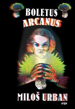 Boletus arcanus - Miloš Urban - 11x16