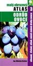 Slivoně,třešně,višně,méně známé druhy ovoce