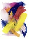 Dekorativní peříčka husí 2 g, mix barev