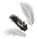 Dekorativní peříčka Marabu 4 g - černá a bílá