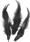 Dekorativní peříčka kohoutí 16 ks, černá