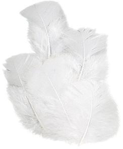 Dekorativní peříčka krocaní 16 ks, bílá