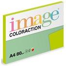Coloraction A4 80g 100ks - Java/středně zelená