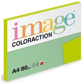 Coloraction A4 80 g - Středně zelená 100 ks