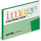 Coloraction A4 80 g - Tmavě zelená 100 ks