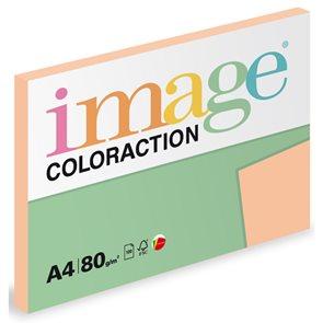 Coloraction A4 80g 100ks - Savana/meruňková