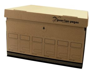 CAESAR OFFICE Archivační krabice s víkem 470x310x320mm