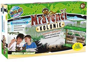 Mravenčí kolonie