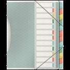 Třídící kniha Esselte Colour'Ice A4, 12 záložek