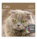 Kalendář nástěnný 2019 Label your days - Cats