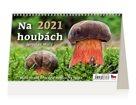 Kalendář stolní 2021 - Na houbách