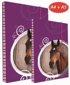 SET BOX A4+A5 + dárek sešit 444 - Kůň