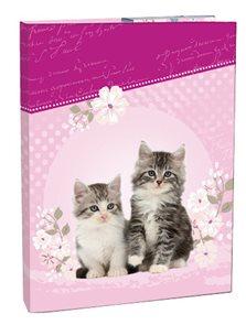 Box na sešity A4 Kitten