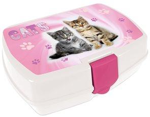 Karton PP Box na svačinu - Kočka