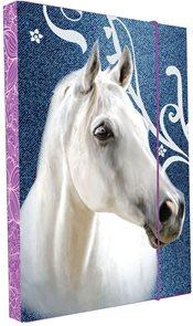 Karton PP Desky na sešity s boxem A5 - Kůň vzor 2015