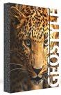 Karton PP Desky na sešity s boxem A4 JUMBO - Leopard