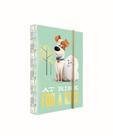 Desky na sešity s boxem A5 - PETS/Tajný život mazlíčků