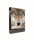 Desky na sešity s boxem A4 JUMBO - GEO WILD vlk