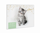Desky na číslice - My little friends Kočka