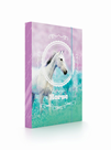 Desky na sešity s boxem A4 - Kůň Romantic