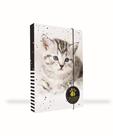 Desky na sešity s boxem A4 - Kočka