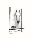 Desky na sešity s boxem A5 Jumbo - GEO WILD kůň bílý