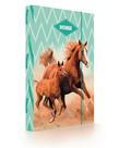 Desky na sešity s boxem A4 Jumbo - Kůň 2020
