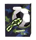 Box na sešity A4 PP s uchem - Fotbal 2020