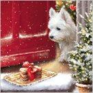 Stil Ubrousky 33 x 33 Vánoce - Dárek pro domácího mazlíčka