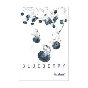 Herlitz Fresh Fruit Záznamní kniha A5 čtverečkovaná - Borůvka