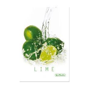 Herlitz Fresh Fruit Záznamní kniha A5 čtverečkovaná - Limeta