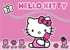 Dětský koberec Hello Kitty Butterfly 95 x 133 cm