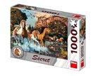 Puzzle Koně 15 skrytých detailů 1000 dílků