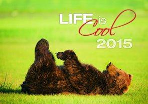 Helma Nástěnný kalendář měsíční 31,5x45 cm - Life is...