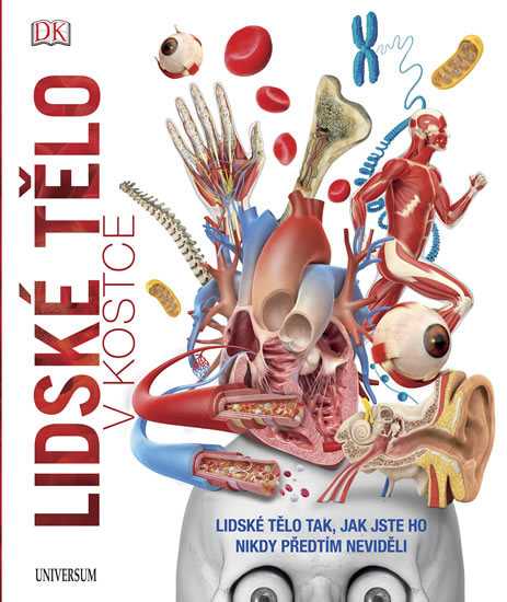 Lidské tělo v kostce - kolektiv autorů