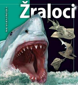 Žraloci - Na vlastní oči