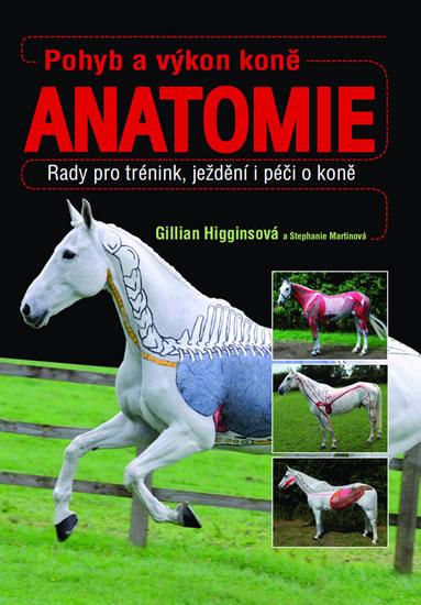 Pohyb a výkon koně - Anatomie - neuveden