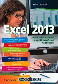 Excel 2013 práce s databázemi a kontingenčními tabulkami