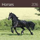Kalendář nástěnný 2016 - Horses