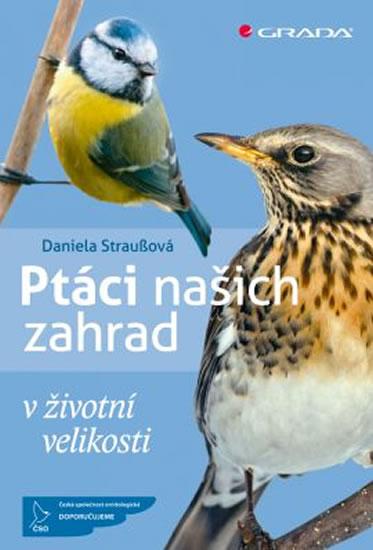 Ptáci našich zahrad v životní velikosti - Straußová Daniela - 13x19 cm, Sleva 12%