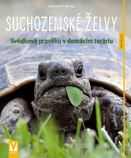 Suchozemské želvy - Svědkové pravěku v domácím teráriu - Wilke Hartmut