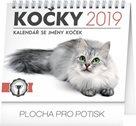 Kalendář stolní 2019  - Kočky – se jmény koček, 16,5 x 13 cm