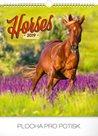 Kalendář nástěnný 2019 - Koně, 30 x 34 cm