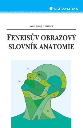 Feneisův obrazový slovník anatomie - Dauber Wolfgang