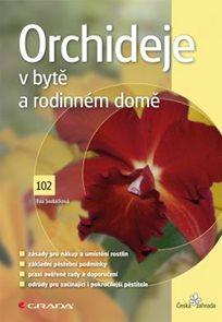 Orchideje v bytě a rodinném domě (102)
