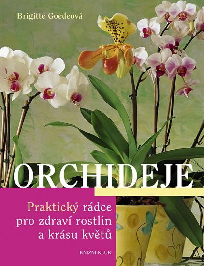 Orchideje - Praktický rádce pro zdraví rostlin a krásu květů - Goedeová Brigitte - 18,1x23,4