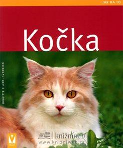 Kočka - Jak na to - Vašut