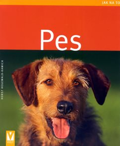 Pes - Jak na to